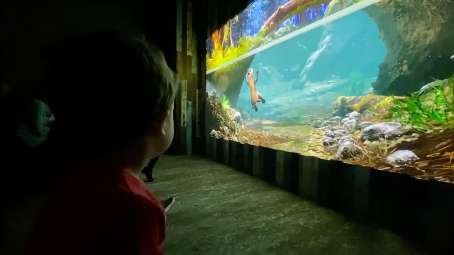 St. Louis Aquarium