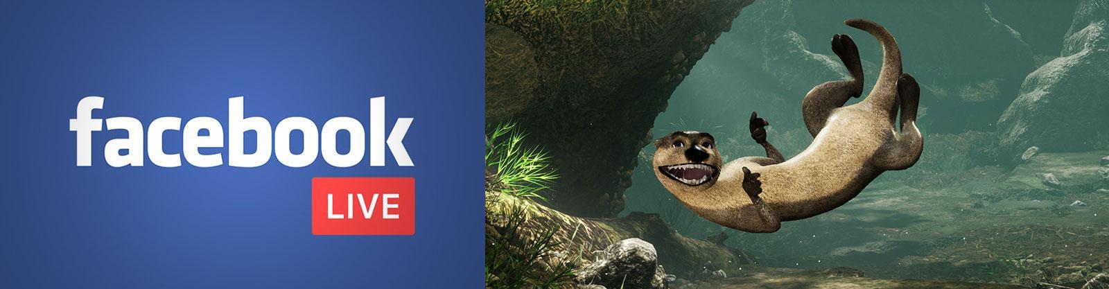 aquarium Facebook live